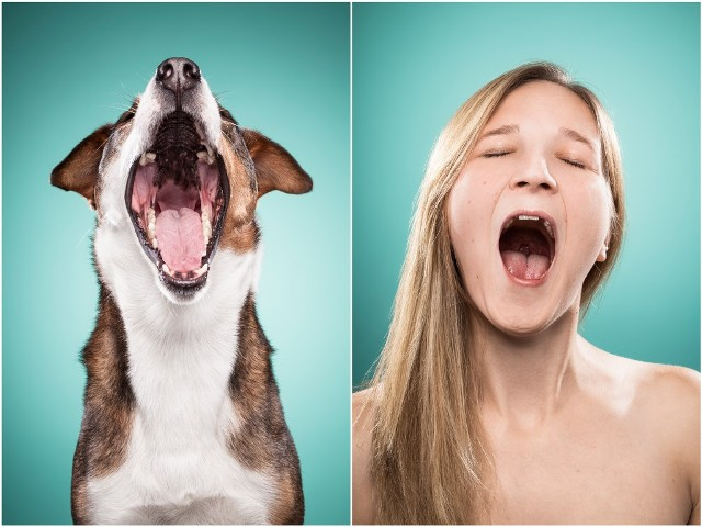 Dog People (16)